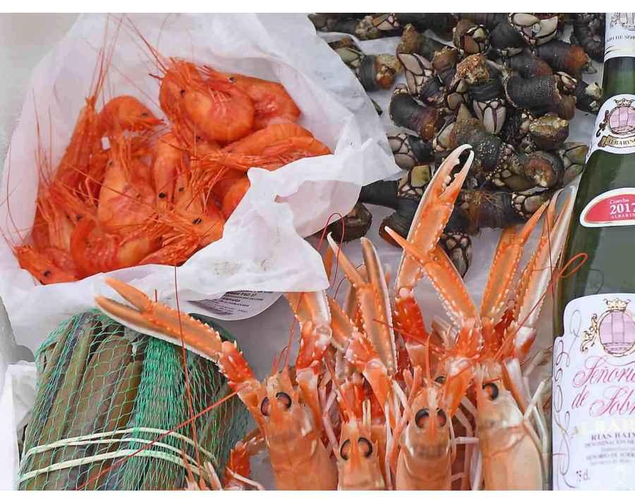 Plateaux de Fruits de Mer Gourmet